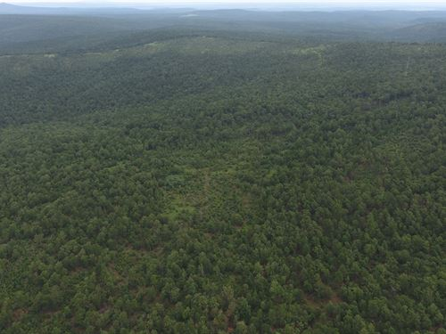 Hunting Land SE Oklahoma, Latimer : Panola : Latimer County : Oklahoma