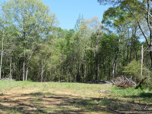 Wooded Home Site : Pickens : Yazoo County : Mississippi