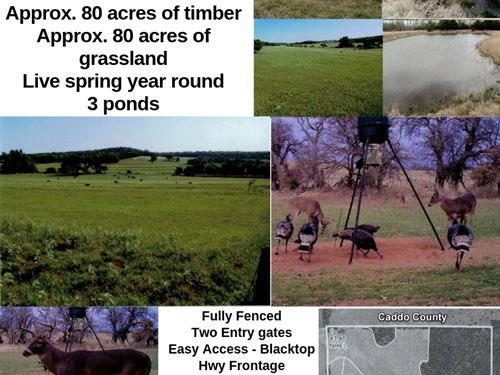 Farm With Pond & Excellent Hunting : Pocasset : Caddo County : Oklahoma