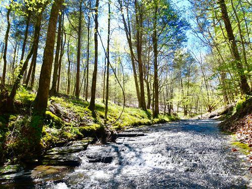 Scenic Copeland Branch : Waynesboro : Wayne County : Tennessee