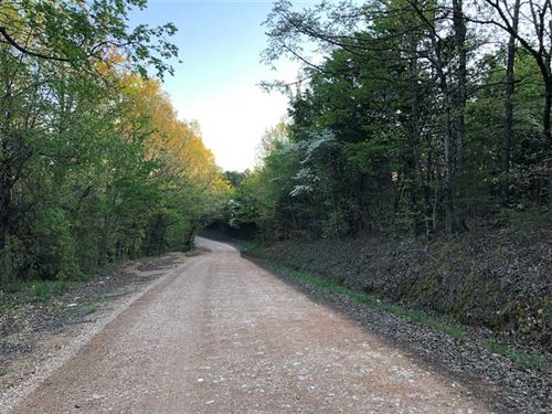 94.78 Acres of Residential, Re : Harriet : Searcy County : Arkansas