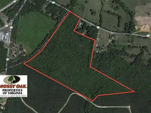 36.4 Acres of Hunting And Recreati : Buffalo Junction : Mecklenburg County : Virginia