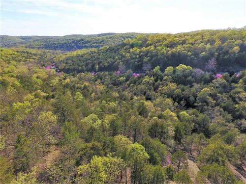 5-Acre Lot in Freedom Ridge Estate : Branson West : Stone County : Missouri