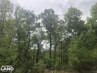 Sumter Homesite And Hunting Land : Dalzell : Sumter County : South Carolina