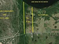 Lakefront Cattle & Hunting Land : Frostproof : Polk County : Florida