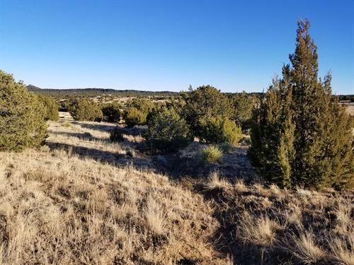 Tranquil 2.69 Acres Lot In Huerfano : Walsenburg : Huerfano County : Colorado