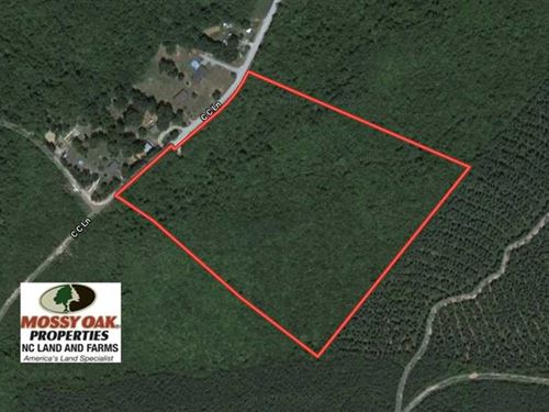 20.42 Acres of Hunting And Recreat : Drakes Branch : Charlotte County : Virginia