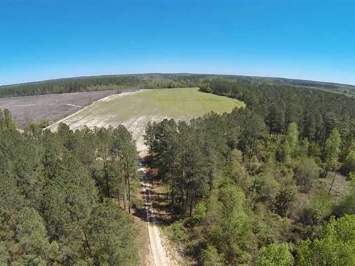 1384 Acres in Spring Lake, Harn : Spring Lake : Harnett County : North Carolina