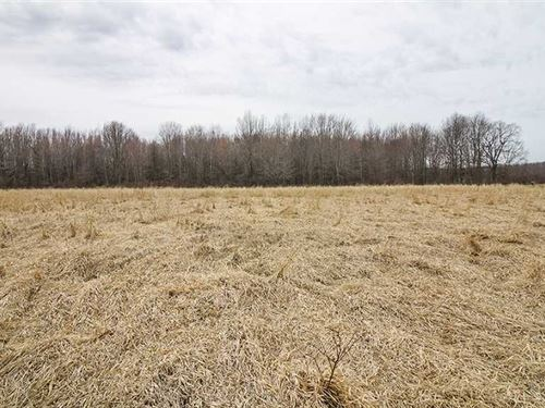 Ninevah Rd, 6 Acres, Ashtabula : Ashtabula : Ohio