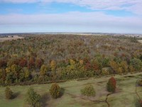 320 Acres of Green Timber Duck : Newport : Jackson County : Arkansas