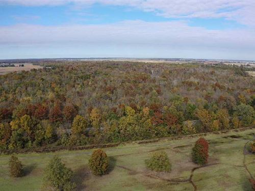 320 Acres of Green Timber Duck : Newport : Jackson County : Arkansas
