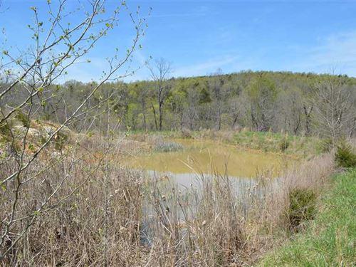 40 Acres in Summit, AR : Summit : Marion County : Arkansas