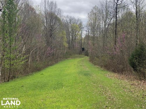 Westpoint Hunting And Timber Invest : Westpoint : Lawrence County : Tennessee