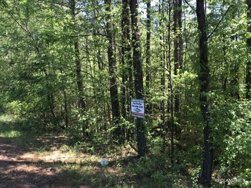 43 Ac, Timberland With Home Site : Strong : Union County : Arkansas