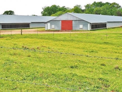 4 House Poultry Broiler Farm, 89 Ac : Lumberton : Lamar County : Mississippi