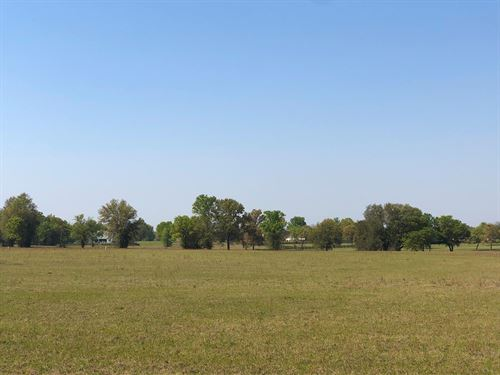 Premium Equestrian Parcel Oaks Lake : Lake City : Columbia County : Florida