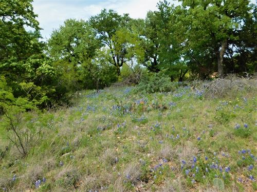 Golf Course Property, Lake : Brownwood : Brown County : Texas