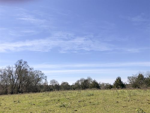 70 Acres Cr 3302-1 : Jacksonville : Cherokee County : Texas