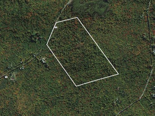 Adirondack Mountains Wooded Acres : Stony Creek : Warren County : New York
