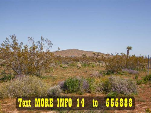 Easy Access, Near Water And Power : Joshua Tree : San Bernardino County : California