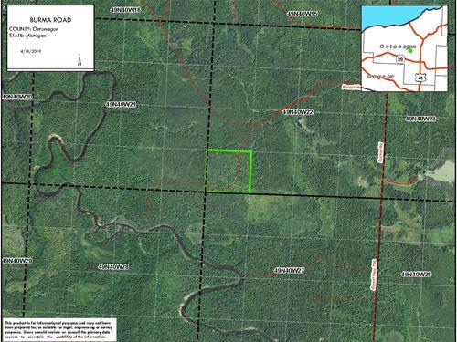 Burma Road, 40 Acres : Rockland : Ontonagon County : Michigan