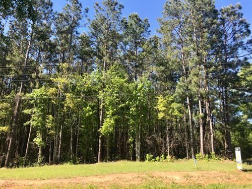 The Bogue Chitto Retreat : Bogue Chitto : Lincoln County : Mississippi