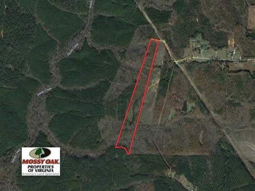 Reduced, 30 Acres of Hunting : Victoria : Lunenburg County : Virginia