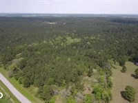 Large Wooded Ranchette Homesite, Tr : Richards : Montgomery County : Texas