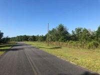 Lot 18 Deer Meadow Phase 2 : Live Oak : Suwannee County : Florida