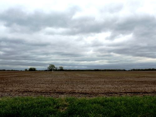 Tillable Row Crop Farm Lake Boone : Hallsville : Boone County : Missouri