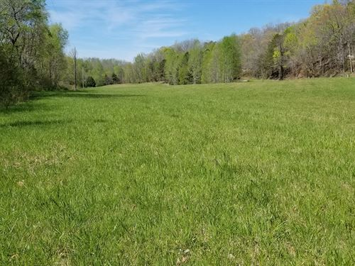 5.02 Unrestricted Acres Perry : Linden : Perry County : Tennessee