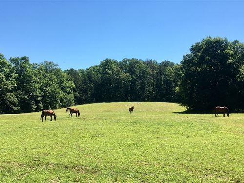 Land Tn, Fenced Pasture, Well : Savannah : Hardin County : Tennessee