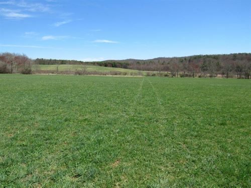 Over 200 Acres Farm Land Floyd VA : Willis : Floyd County : Virginia