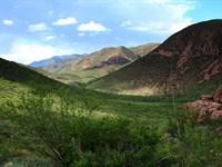 Beautiful West, Horses Ok, $195/M : Douglas : Cochise County : Arizona