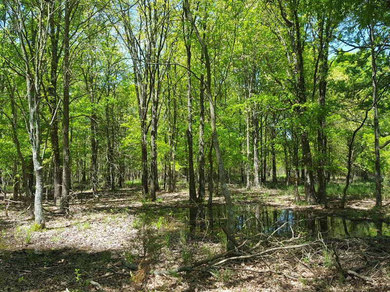 Country Home With Acreage For Sale : Atoka : Atoka County : Oklahoma
