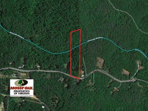 6 Acres of Hunting And Recreationa : Monroe : Amherst County : Virginia