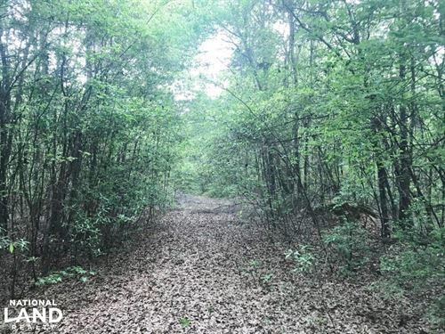 Fosters Homesite : Fosters : Tuscaloosa County : Alabama