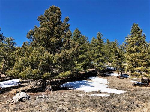 San Juan Springs, Lot 29 : Lake City : Hinsdale County : Colorado