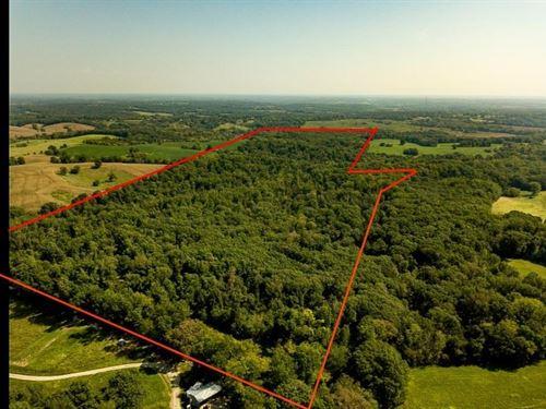 Big Buck Hunting Land Howard CO MO : Fayette : Howard County : Missouri
