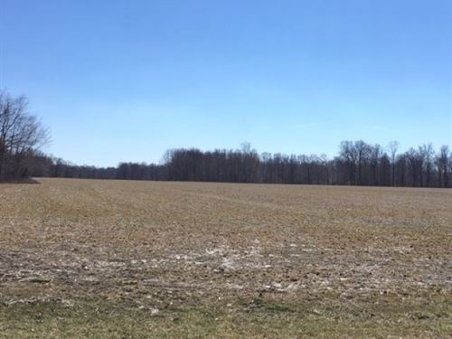 Land For Sale, Clay City : Clay City : Clay County : Indiana