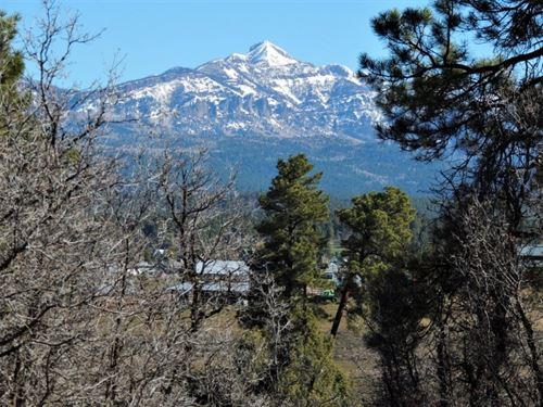 Timber Ridge 1, Lot 24 : Pagosa Springs : Archuleta County : Colorado