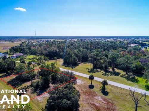 Double Lot : Punta Gorda : Charlotte County : Florida