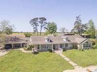 Dickens Ranch 14 Acres : Livingston : Polk County : Texas