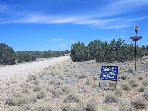 Beautiful Treed Corner Lot : Concho : Apache County : Arizona
