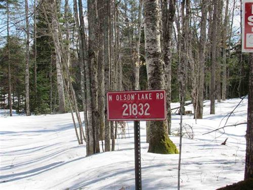 21832 North Olson Lake Rd, 1113670 : Michigamme : Baraga County : Michigan