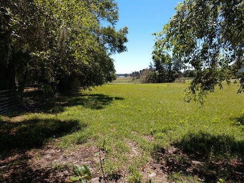 Charming 5 Acre Homestead Mol : Brooksville : Hernando County : Florida
