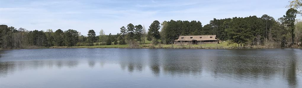 243 Ac, Timberland With Buildings : Arcadia : Bienville Parish : Louisiana