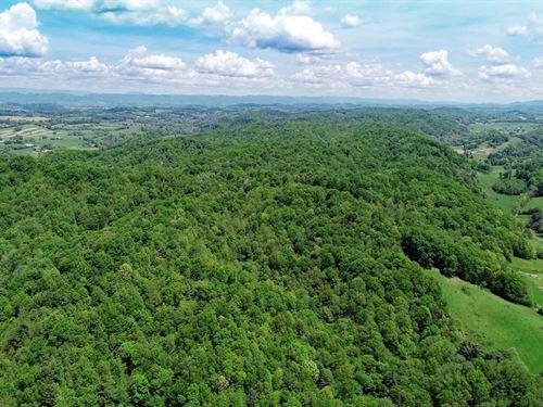 Riverfront Nature Retreat Glade : Glade Spring : Washington County : Virginia