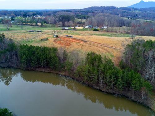 Farm, Pilot Mountain, NC 26.5 Acres : Pilot Mountain : Stokes County : North Carolina