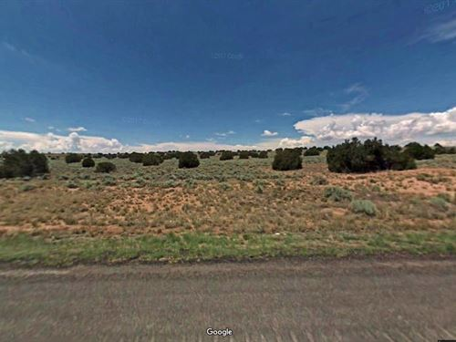 Nice, Trees, Paved Road, $125/Month : Sanders : Apache County : Arizona